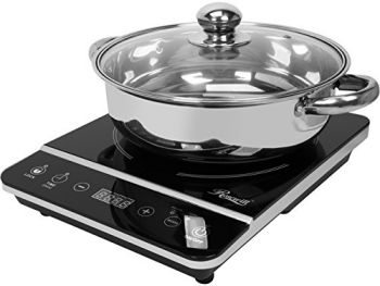 Best Portable Induction Cooktop Reviews 2016 2017